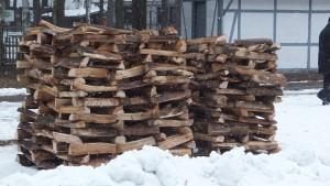 Holz im Wildpark